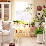 Ide Dekorasi Ruangan Dengan Tanaman Hias